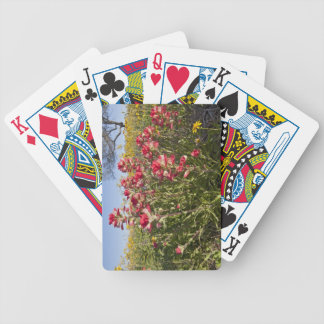 Roadside wildflowers in Texas, spring 4 Bicycle Playing Cards