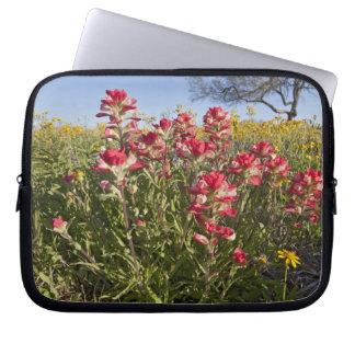 Roadside wildflowers in Texas, spring 4 Computer Sleeve