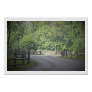 Roadway with Trees Poster