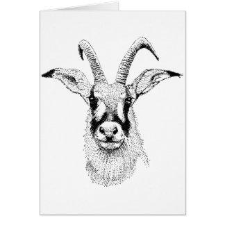 Roan Antelope  study Birthday Card