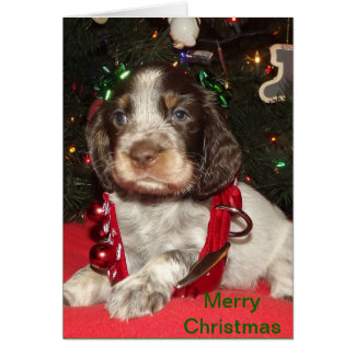 Roan English Springer Spaniel Christmas Puppy Greeting Card