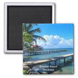 Roantan Beach, Honduras Fridge Magnets