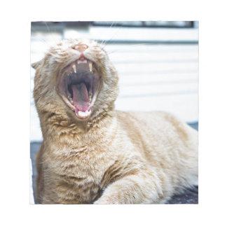 Roar like a Cat Notepad