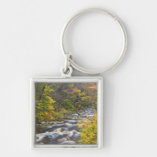 Roaring Brook in fall in Vermont s Green 2 Key Chains