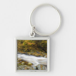 Roaring Brook in fall in Vermont s Green Key Chains