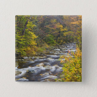 Roaring Brook in fall in Vermont's Green 2 15 Cm Square Badge