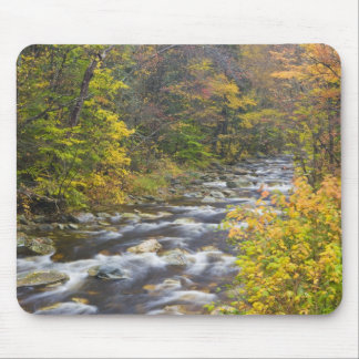 Roaring Brook in fall in Vermont's Green 2 Mouse Mat