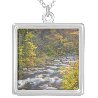 Roaring Brook in fall in Vermont's Green 2 Silver Plated Necklace