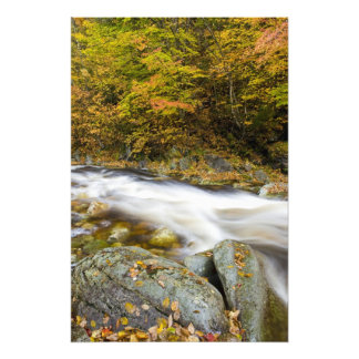 Roaring Brook in fall in Vermont's Green Photograph