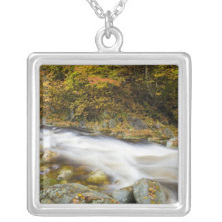 Roaring Brook in fall in Vermont's Green Silver Plated Necklace
