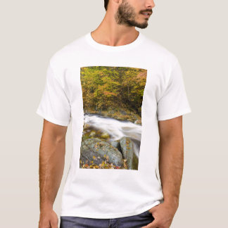 Roaring Brook in fall in Vermont's Green T-Shirt