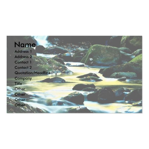 Roaring Fork Trail, Smoky Mountain National Park, Pack Of Standard Business Cards