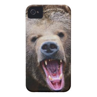 Roaring Grizzly Bear iPhone 4 Case-Mate Cases
