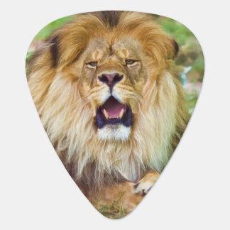 Roaring Lion Plectrum