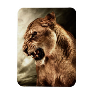 Roaring lioness against stormy sky magnets