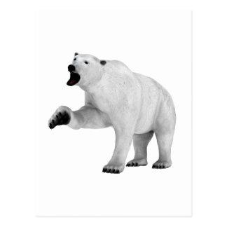 Roaring Polar Bear Postcard