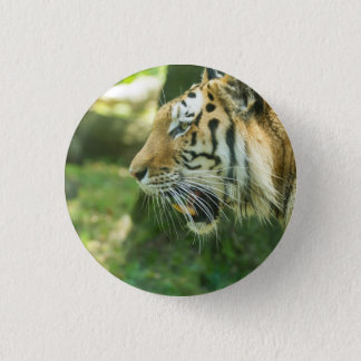 Roaring Tiger 3 Cm Round Badge