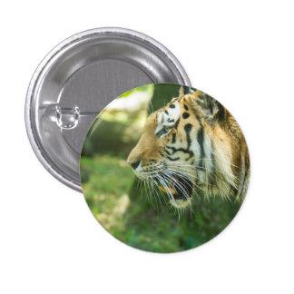 Roaring Tiger 3 Cm Round Badge