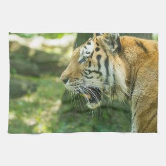 Roaring Tiger Tea Towel