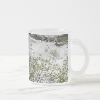 Roaring Waters Frosted Glass Mug