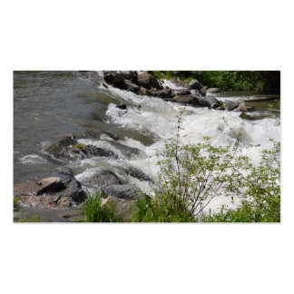 Roaring Waters Pack Of Standard Business Cards
