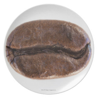 Roast coffee bean, studio shot plate