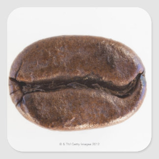 Roast coffee bean, studio shot square sticker