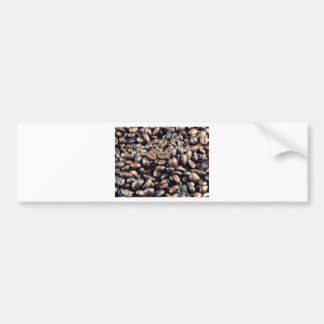 Roasted coffee bumper stickers