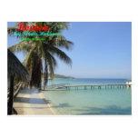 Roatan, Bay Islands, Honduras Post Card
