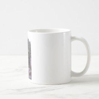 Robber's Cave State Park Basic White Mug