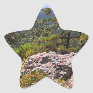 Robber's Cave State Park Star Sticker