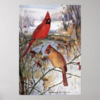 Robert Bruce Horsfall - Vintage Cardinal Poster
