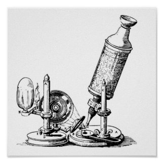 Robert Hooke's Microscope Poster