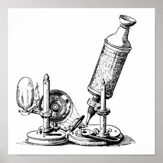 Robert Hooke's Microscope Posters