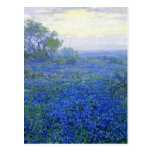 Robert Julian Onderdonk a-cloudy-day-bluebonnets Postcard