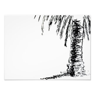 Roberts Tree Photo Print