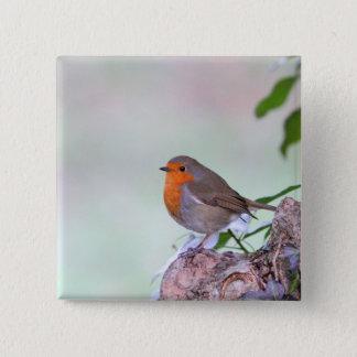 Robin 15 Cm Square Badge