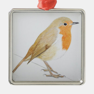 Robin 2011 christmas ornament