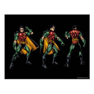 Robin - All Sides Postcard