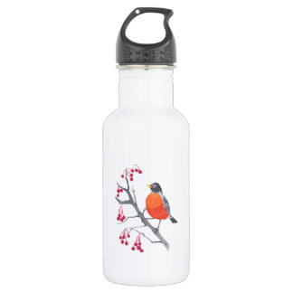 Robin and Berries 532 Ml Water Bottle