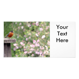 Robin and Wild Roses Photo Photo Card Template