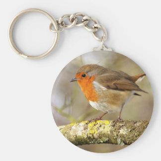 Robin Basic Round Button Key Ring