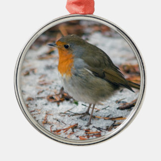 Robin Bauble Christmas Ornament