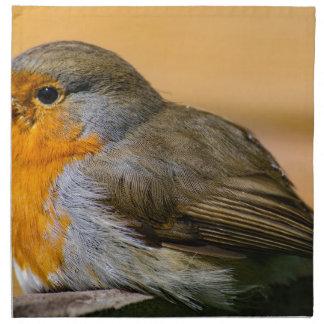 Robin bird on fence. napkin