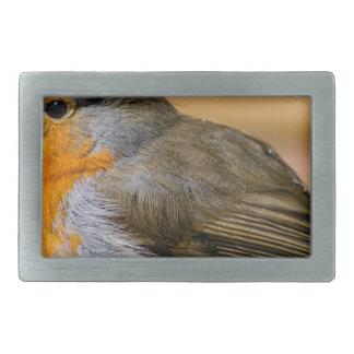 Robin bird on fence. rectangular belt buckles