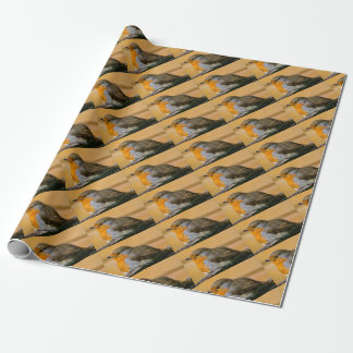 Robin bird on fence. wrapping paper