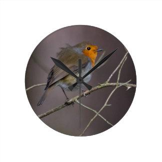 Robin Bird Round Clock