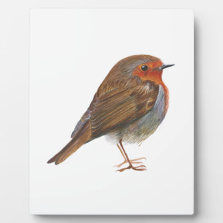 Robin Bird Watercolor Painting Artwork Redbreast Plaque