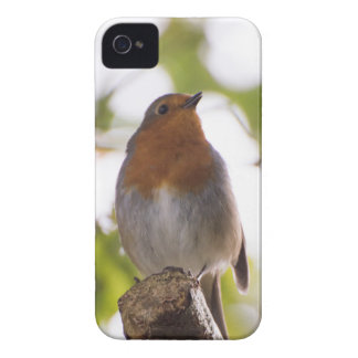 Robin Case-Mate iPhone 4 Cases
