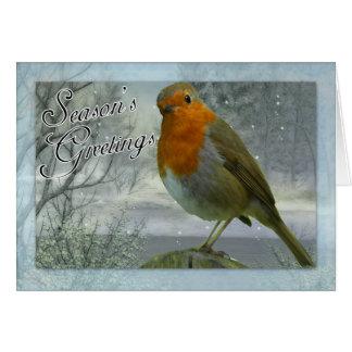 Robin Christmas Card, Season's Greetings Greeting Card